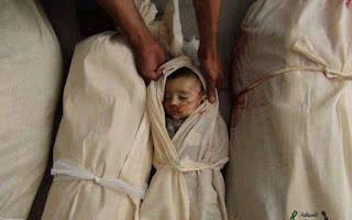 Derita Muslimin Suriah, Ganasnya Syiah