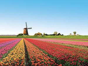 Paket Tour River Cruise Amsterdam Promo