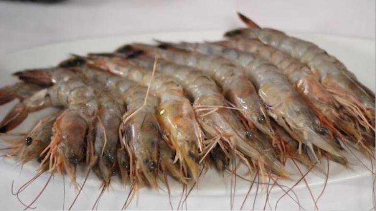 Buying, Preparing, and Cooking Frozen Shrimp Recipes at ...