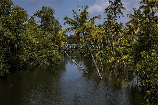 أجمل مشاهد الطبيعة الخلابة في الهند