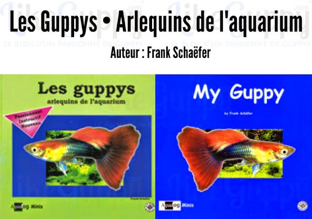 les-guppys-arlequins-de-aquarium