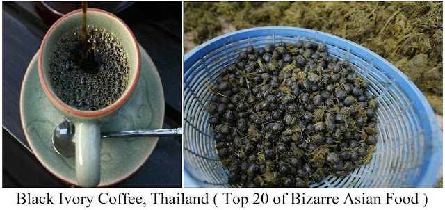 Black Ivory Coffee, Thailand- top 20 of bizarre asian food