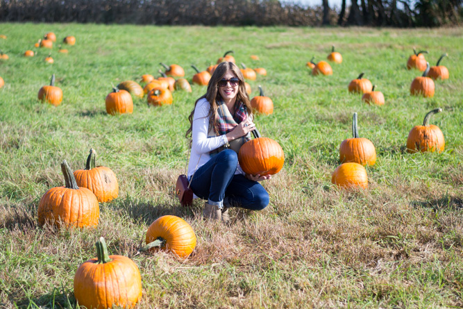 My 10 Favorite Fall Traditions | Chasing Cinderella