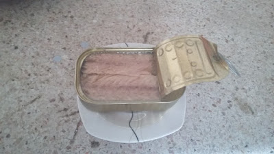Mackerel from Morocco Canned Product Varieties