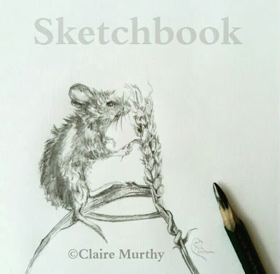 wildlife art mouse sketch