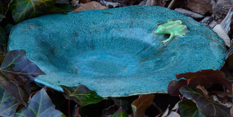 Learn how to make this cute lily pad birdbath for the birds this spring.