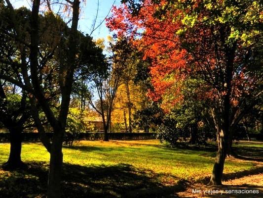 Colores del otoño en el Jardín de la Isla, Aranjuez