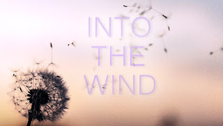 ♪ Into The Wind ♪ Divyns