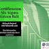 Certificación: Six Signa Green Belt