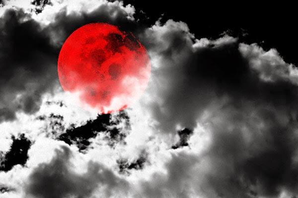 MaeLyn's Musings: Beware the Zombie Apocalypse!