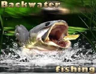 Durgun Suda Balık Tutma - Backwater Fishing