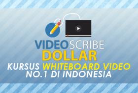 Videoscribe Dollar