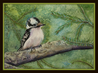 Downey Woodpecker pastel on watercolor ncwren