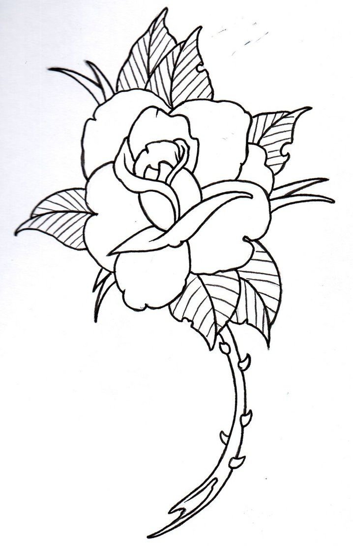 Tattoo Outlines Flowers Black And White: Sunbeamflowers: Flowers Outlines
