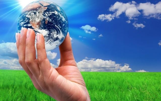 التوازن بيئي