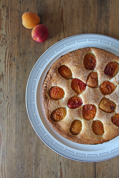Aprikosen-Kuchen