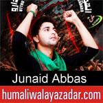 https://www.humaliwalyazadar.com/2018/09/junaid-abbas-nohay-2019.html