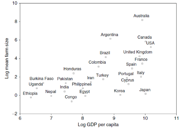 Figure 1. Mean farm size and GDP per capita, selected countries, 1990s