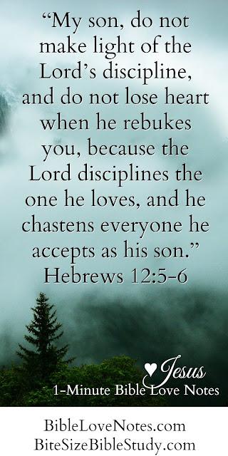 Hebrews 12:5-6, Anne Graham Lotz versus Mark Woods