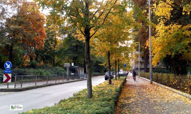 outono bélgica