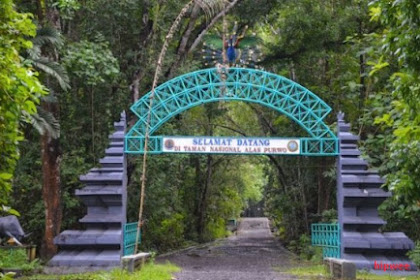 Misteri Hutan Tertua Pulau Jawa, Taman Nasional Alas Purwo