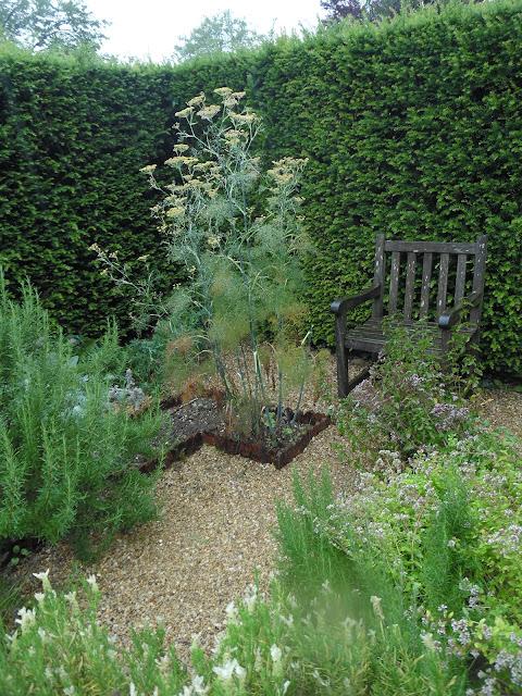 żywopłot z cisa, wnętrza ogrodowe, drewniana ławka