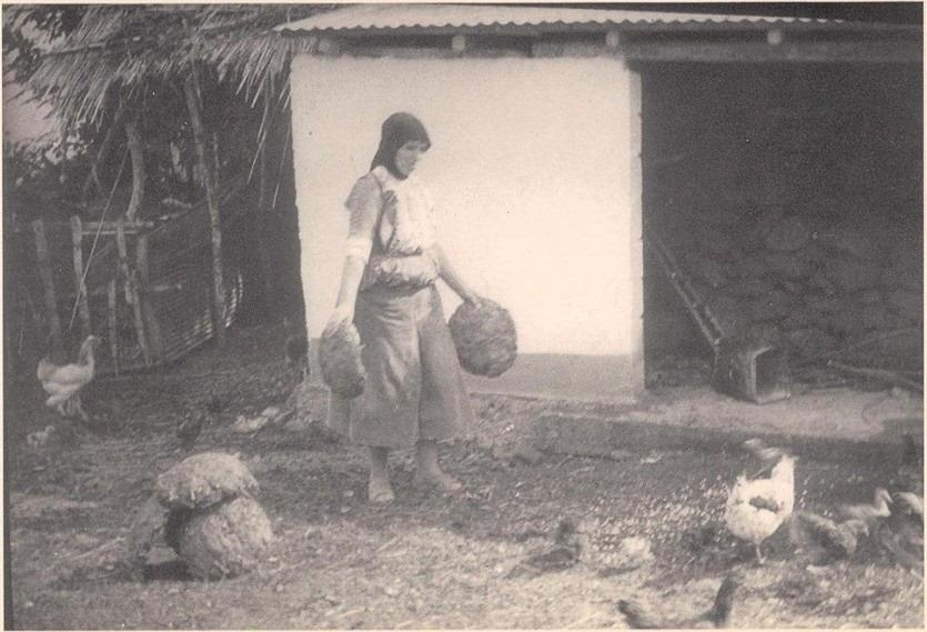 Ολίβια μαύρο μουνί
