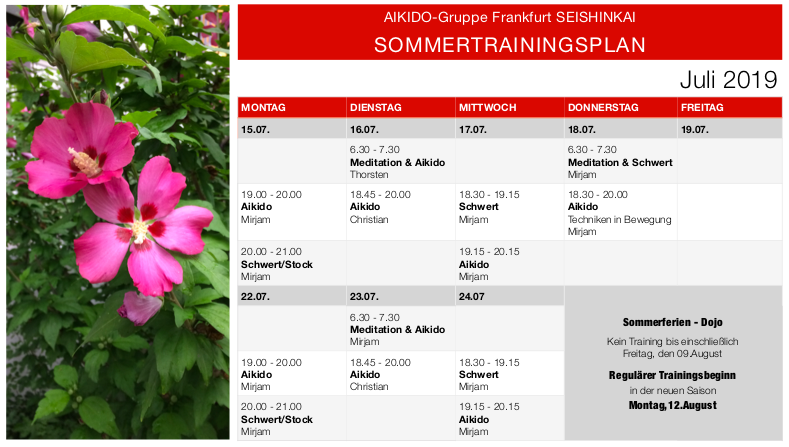 SOMMERTRAININGSPLAN