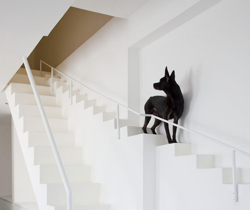 Pet Friendly Home Decor: Nag On The Lake: Small Stairs For Small Dogs