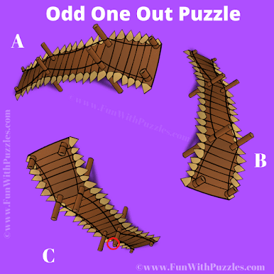Answer of Odd One Out Bridge Picture Puzzle for Teens