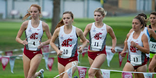 colfax cougar women What is cougcenter washington state cougars  wsu hosts confernce cross country championships new  both the men and women ran friday at the colfax golf club.