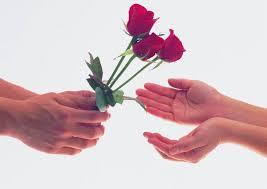بذرة الحبّ