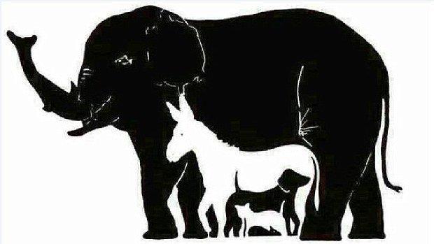 Quantos animais há na imagem?