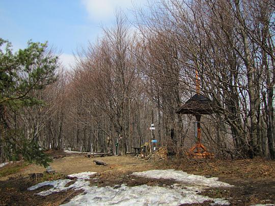 Widok na całą polankę pod szczytem Magury Wątkowskiej.