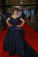 Payal Ghosh aka Harika in Dark Blue Deep Neck Sleeveless Gown at 64th Jio Filmfare Awards South 2017 ~  Exclusive 113.JPG