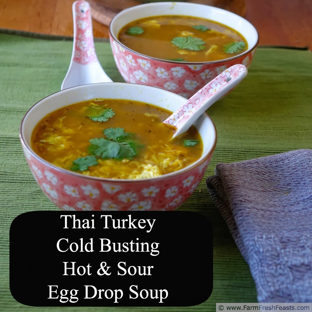 Thai Turkey Cold Busting Hot and Sour Egg Drop Soup | Farm Fresh Feasts