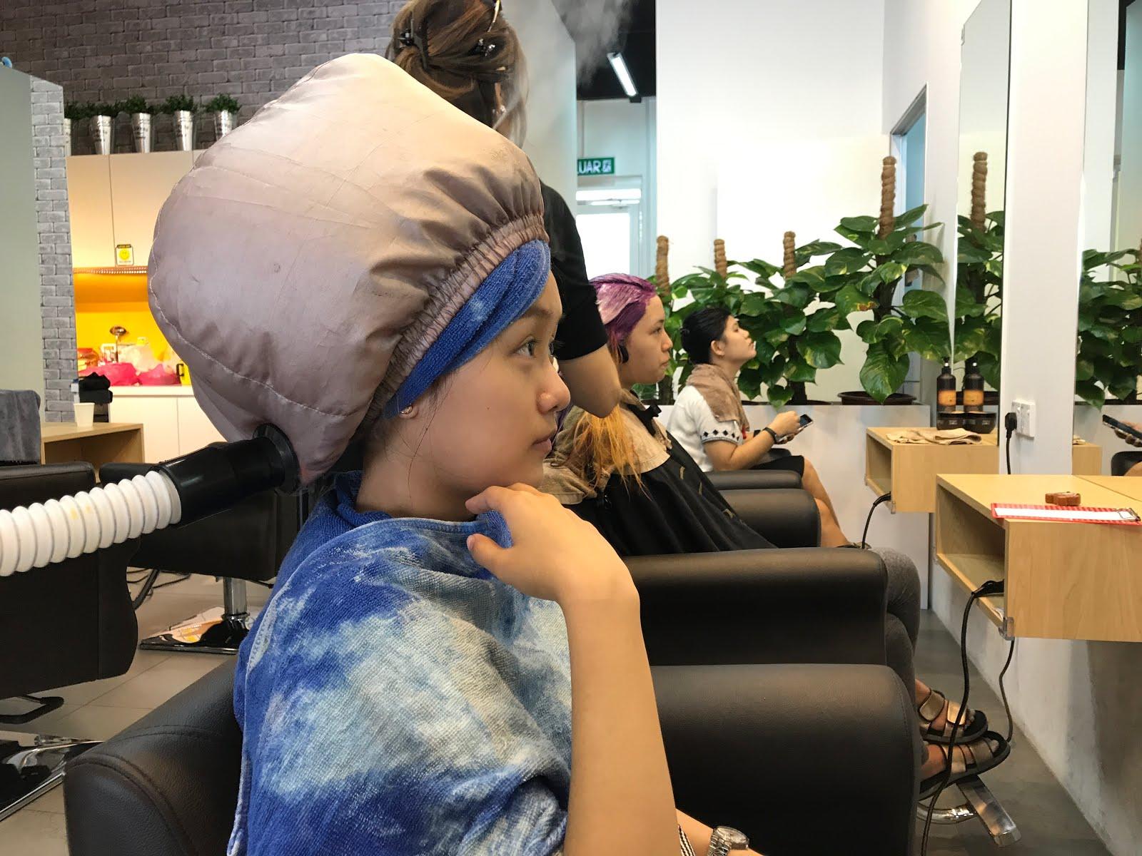 korea royal nano mist hair treatment review