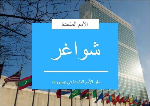 #شواغر: وظيفة كبير مراجعين في دائرة الترجمة العربية SeniorReviserArabic