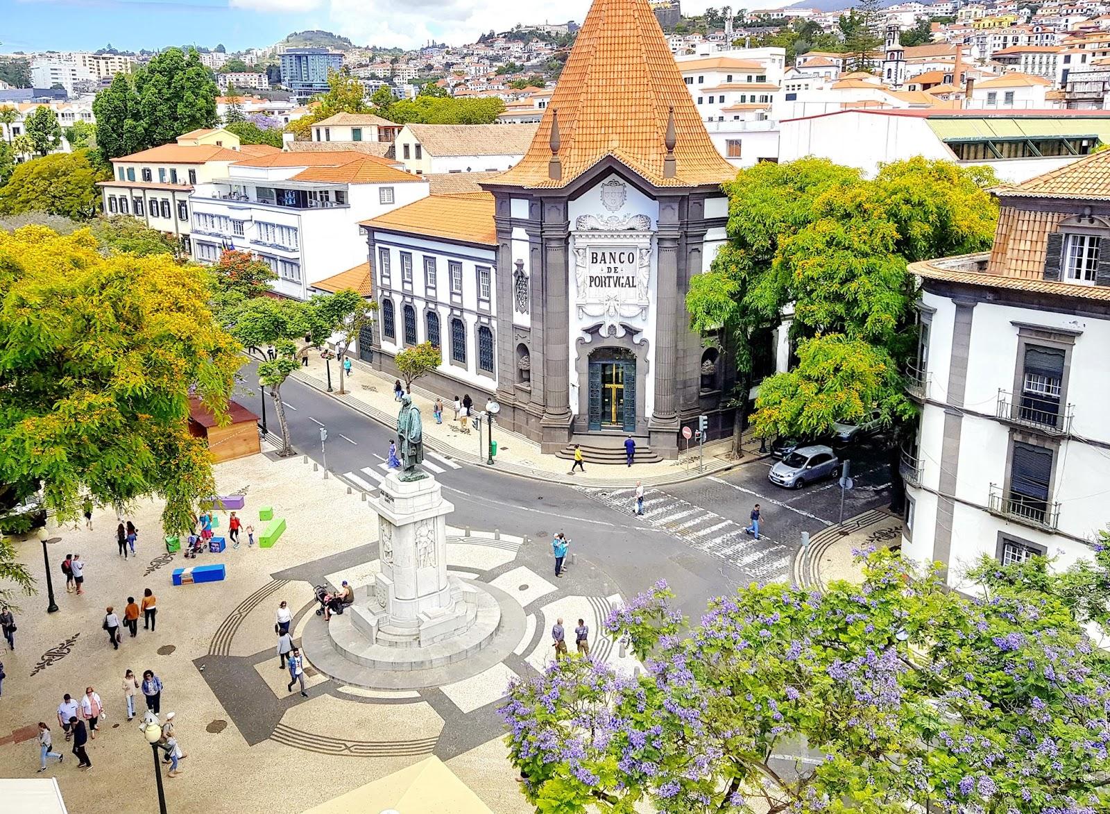 árvores que pintam a bandeira do Funchal