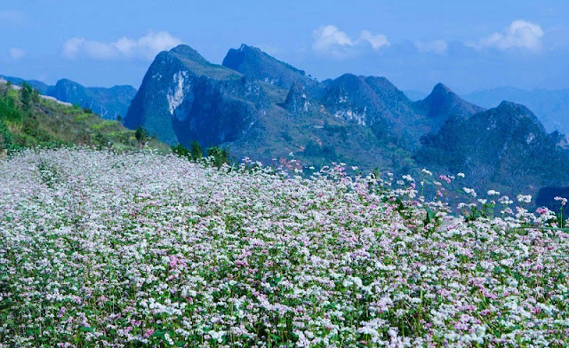 Excursion the beautiful destinations of Vietnam in this September 2