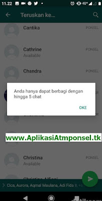 Berapasa Batasan Forward Pesan WhatsApp untuk Pengguna layanan WhatApp