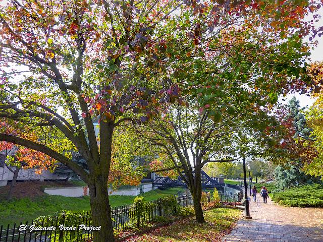 Calles de Syracuse - New York por El Guisante Verde Project