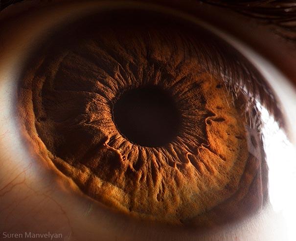 eye-macro-photo-12