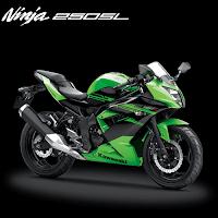Paket Kredit Murah Terbaik Kawasaki Ninja RR 250 Mono