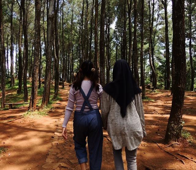 Main ke Hutan Pinus Mangunan - Imogiri