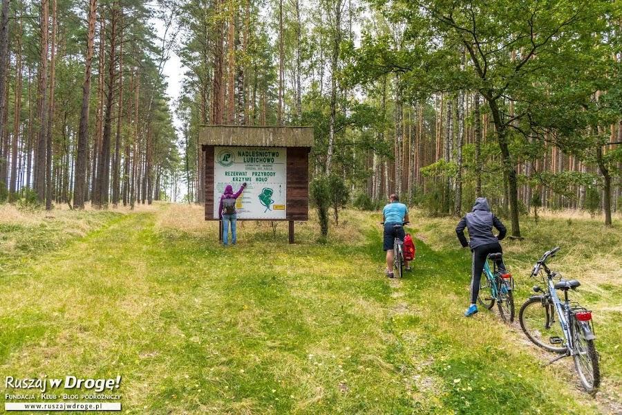 Kociewskie Trasy Rowerowe - Na Szlaku do Krzywego Koła