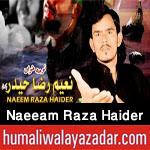 http://www.humaliwalayazadar.com/2017/10/naeeam-raza-haider-nohay-2018.html