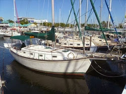 Wrinkles in Our Sails: The Highs and Lows of Boat Buying