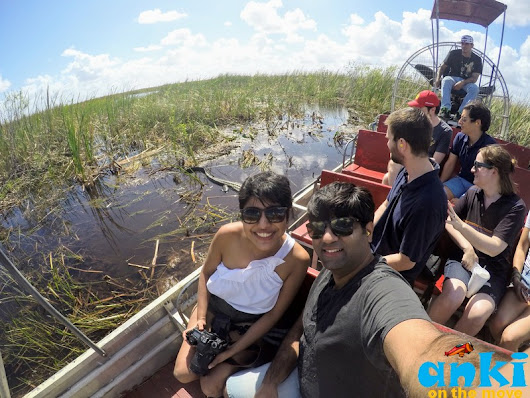 Anki On The Move: What to do in Everglades | The Alligatorland of Florida
