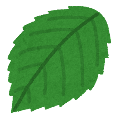 薔薇の葉のイラスト